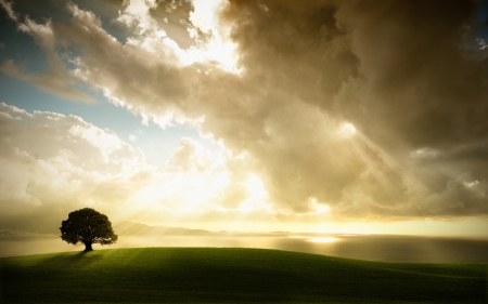 sun_through_clouds_one_tree_hill